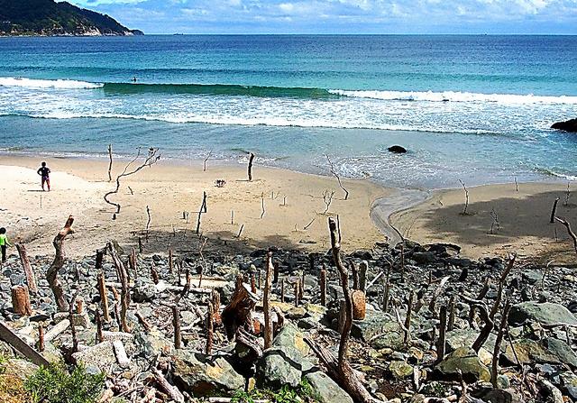 島袋道浩が石巻市の浜辺で、そこにある石や木を立てて見せた「起こす」。鑑賞者参加型でもある
