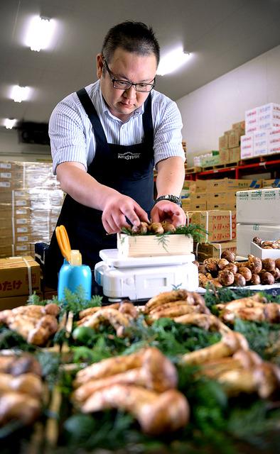 国産のマツタケがピークを迎えるのは9月以降。ブータン産の検品と箱詰めをする鈴木さんの表情は真剣そのものだ=東京都大田区の大田市場、関口達朗撮影