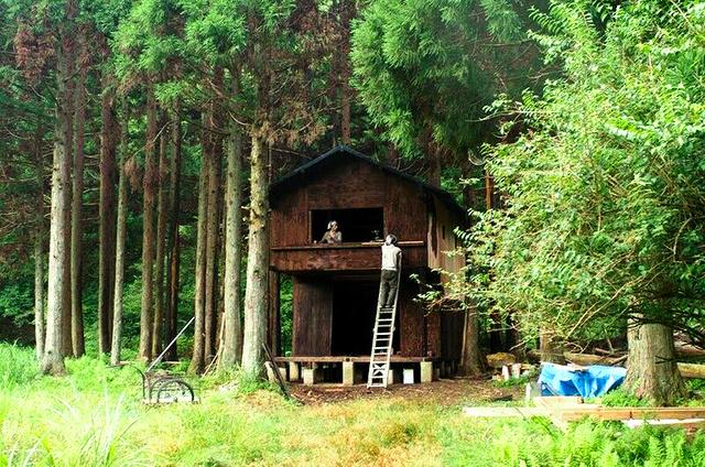 有志で再建した拠点小屋。「大見HUT」と名付けたという(大見新村プロジェクト提供)