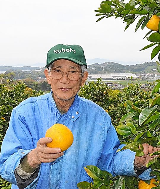 晴れた日はみかん畑へ。環境と健康を気遣い無農薬で育てた=2013年4月、熊本県水俣市