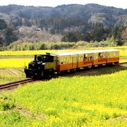 のどかな小湊鉄道にグッドデザイン賞 風景と融和する駅