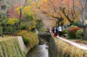 紅葉が色づき始めた哲学の道。京都帝国大の開学以来、多くの文人らが物思いにふけりながら散策した=12日、左京区