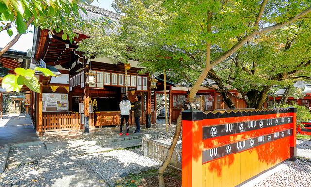 車折神社の本殿。モミジの木の下の一角に、お礼の石が積み重ねられている=京都市右京区、槌谷綾二撮影