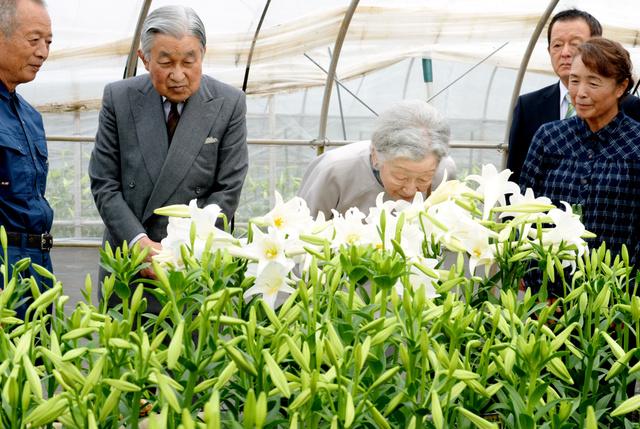 テッポウユリの農家を訪問した天皇、皇后両陛下=18日午前10時22分、鹿児島県知名町赤嶺、迫和義撮影