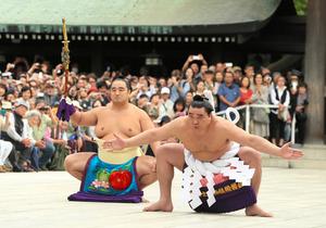 「日馬富士が引退無料写真」の画像検索結果