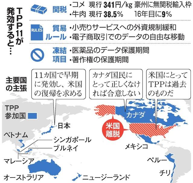 TPP11が発効すると…