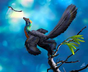 虹色の羽毛生えていた?新種恐竜の化石発見 中国河北省