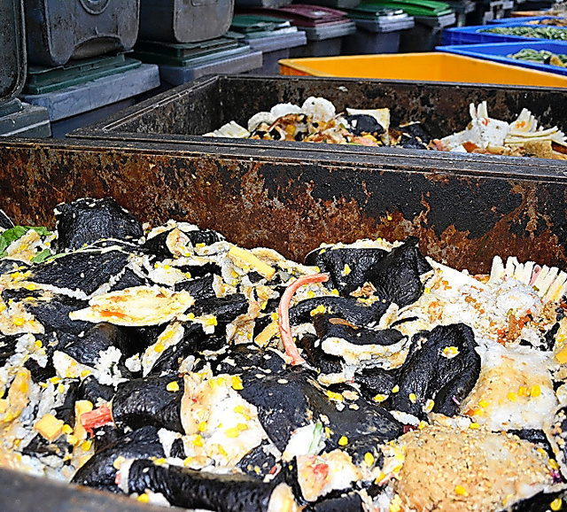 食品工場から持ち込まれた、恵方巻き用とみられる食材。500リットルの容器に10箱ほど並んでいた=3日午後4時、神奈川県相模原市の日本フードエコロジーセンター