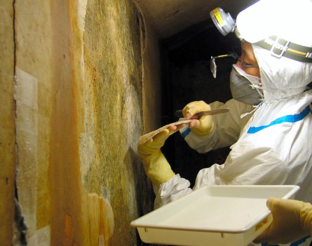 キトラ古墳の石室から白虎の前脚部分を慎重にはぎ取り、手のひらで受ける技術者=2005年5月、文化庁提供