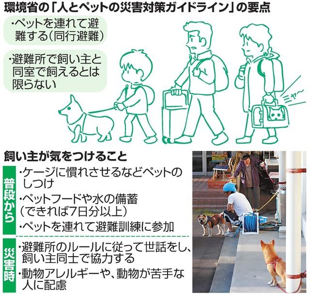 環境省の「人とペットの災害対策ガイドライン」の要点/飼い主が気をつけること