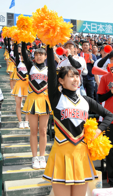 【画像】丸亀城西のチアガール衣装がエロすぎではと話題に ->画像>62枚