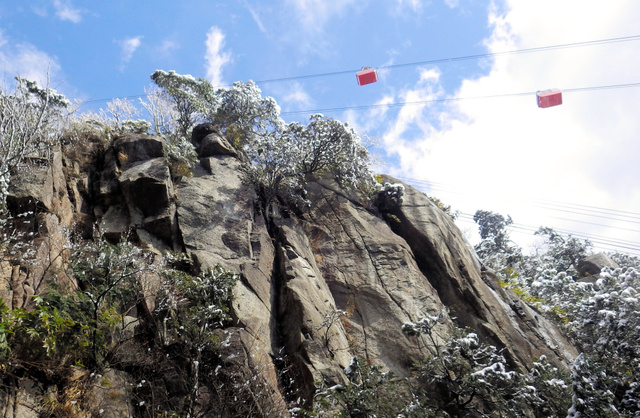 本谷から見上げた御在所ロープウエイのゴンドラ。標高約1千メートル、大黒滝の上部付近で写す
