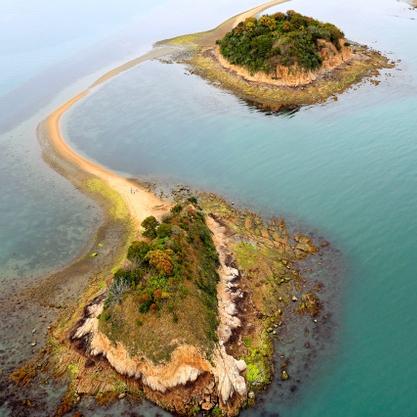 干潮時だけ出現、砂の道人気 黒島ヴィーナスロード
