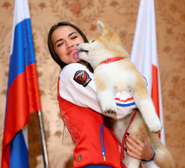 モスクワで26日、秋田犬「MASARU(マサル)」に顔をなめられるロシアのアリーナ・ザギトワ選手=岩下毅撮影