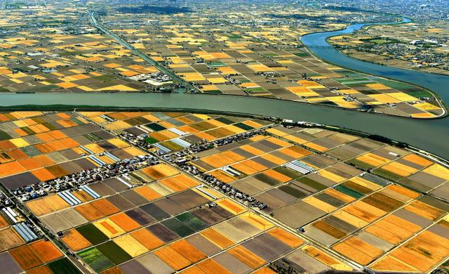 収穫前や収穫後などで違った色合いのモザイク模様を描く大麦畑=2018年6月1日午後、岡山市南区、朝日新聞社ヘリから、小川智撮影