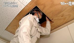 「ガイアの夜明け」から。レオパレス21のアパートの屋根裏を調べる岐阜市の調査員。市内のアパートオーナーの親族が調査を依頼した