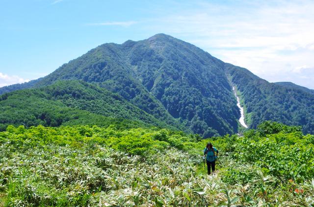 標高1186メートルの小荒島岳山頂から見た荒島岳。大野盆地では「大野富士」とも呼ばれる