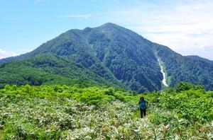 荒島岳 ゆったり威厳ある山