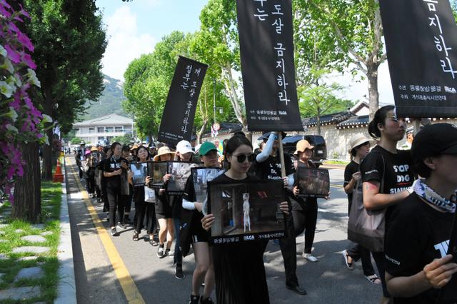 犬肉の食用禁止を訴えて「犬のお葬式」のパフォーマンスをしながら歩く動物愛護団体=17日、ソウルの大統領府周辺、武田肇