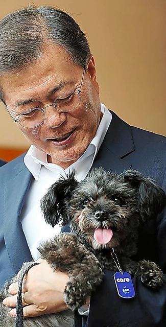 文在寅大統領に抱かれる愛犬「トリ」=2017年7月、大統領府提供