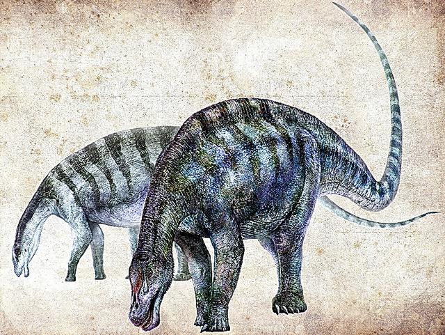 新種の恐竜の想像図=Zhang Zongda氏提供