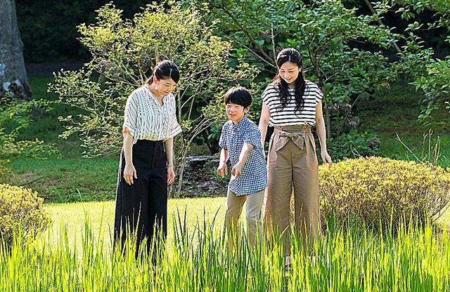 12歳の誕生日を迎えた秋篠宮ご夫妻の長男悠仁さま。お住まいがある赤坂御用地内を眞子さま、佳子さまと散策する様子=赤坂御用地、宮内庁提供