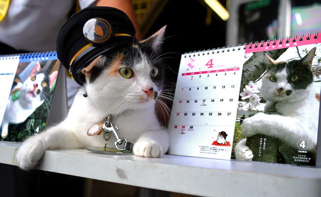カレンダーと伊太祈曽駅長のよんたま=2018年9月25日、和歌山市伊太祈曽