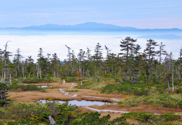 千町ケ原の湿原と高山盆地を覆う雲海。遠方の山は白山連峰
