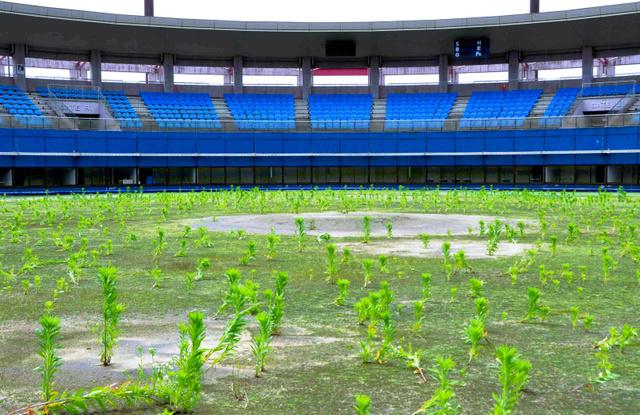 震災後、閉鎖された名取スポーツパークの愛島球場=2012年6月