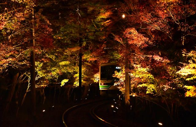 「もみじのトンネル」を通過した「もみじ列車」=2018年11月14日夜、京都市左京区、足立菜摘撮影