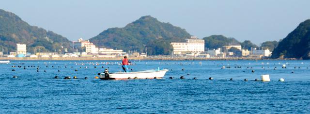 漁業、70年ぶり抜本改革 「地元...