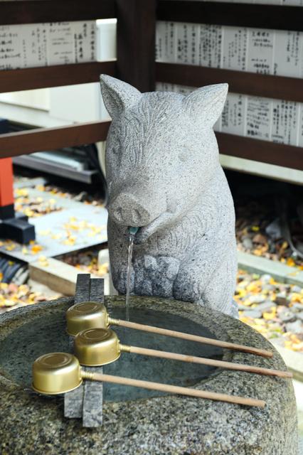護王神社のイノシシの形をしたちょうず=京都市上京区、滝沢美穂子撮影