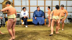 大相撲初場所 - 相撲 - スポーツ:朝日新聞デジタル