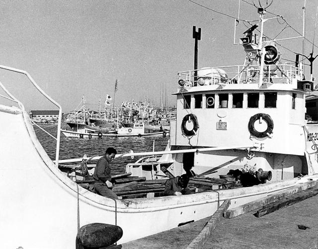 港に係留されるレポ船=1975年、北海道根室市