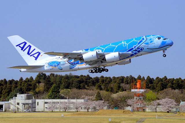 慣熟飛行で関西空港に向けて離陸したANAの「空飛ぶウミガメ」=2019年4月6日午前9時12分、千葉県成田市の成田空港、根岸敦生撮影