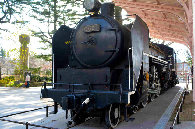 西公園に展示・保存されているC601=仙台市青葉区