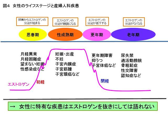 女性のライフステージと産婦人科疾患(弘前大学提供)