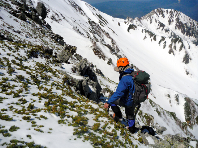 中央アルプスの木曽駒ケ岳周辺で、昨年見つかったライチョウのメスの生存調査をする中村浩志・信大名誉教授=2019年5月8日午前10時9分、中央アルプス、環境省提供