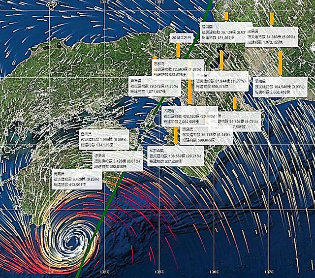 昨年の台風21号による建物被害予測を表示した例=cmap.devの画面から
