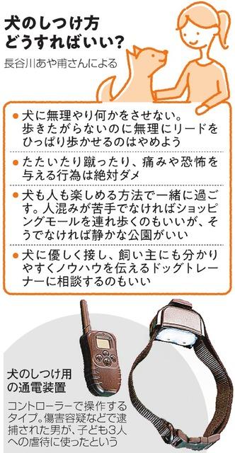 【都会の】駿台福岡校【ど真ん中】 ->画像>6枚