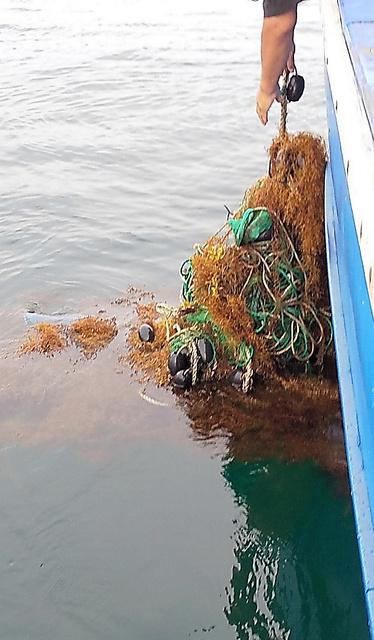 海藻とともに海面を漂っていた漁具とみられるプラごみ。釣り船が回収した=2019年6月、神奈川県平塚市沖