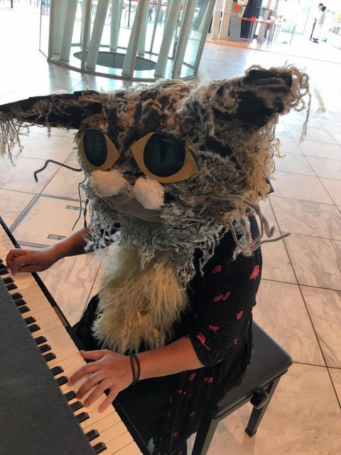 時々やってくる猫ピアニスト=せんだいメディアテークのツイッターから