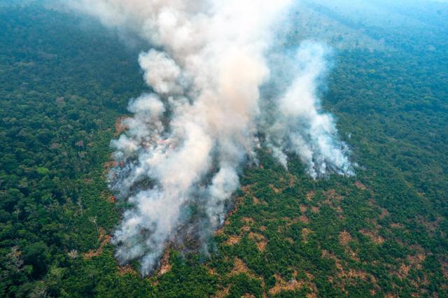 地球の肺」が呼吸困難 アマゾン火災、日本も関わりが [今さら