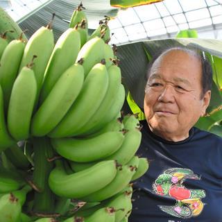鉄工職人が育てるバナナ 強気の価格、皮までもっちり