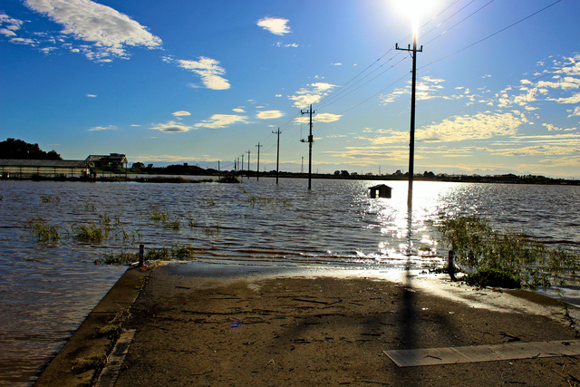 旗川や出流川などの氾濫(はんらん)で、一面が水に漬かってしまった水田=2019年10月13日午後3時26分、栃木県佐野市村上町、足利市提供
