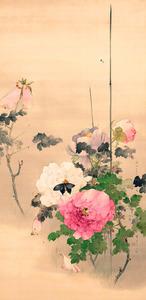 (美の履歴書:694)「牡丹に蝶の図」 渡辺省亭 この華やかさ、熱視線のわけ