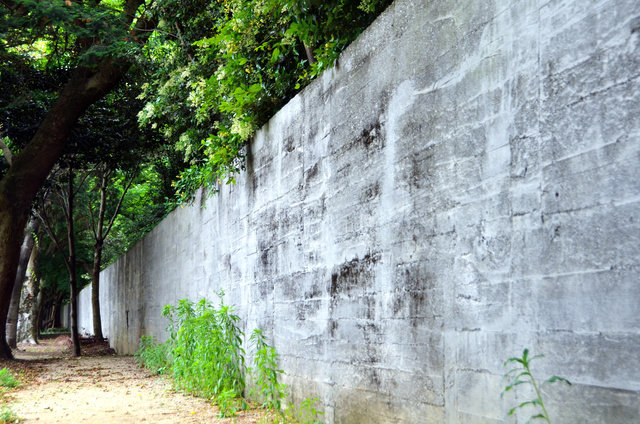 国立ハンセン病療養所・菊池恵楓園の壁。高さは約2メートル。強制隔離していた入所者の逃走防止のためだった=2013年5月、熊本県合志市