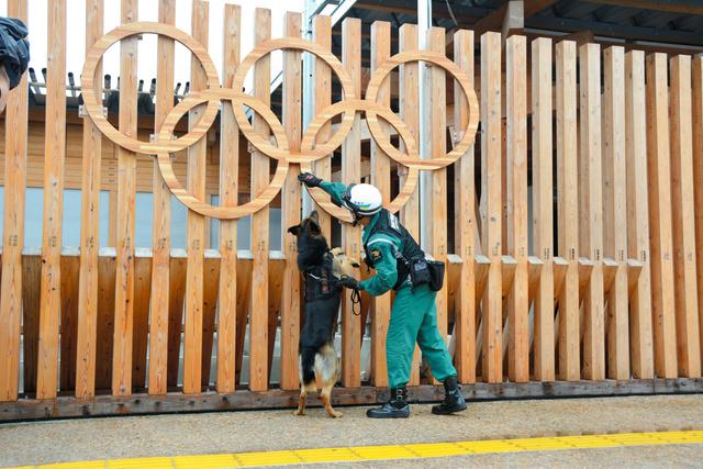 選手村の交流スペース「ビレッジプラザ」を嗅ぎまわって不審物を探す警備犬=2021年7月3日午前10時13分、東京都中央区、鶴信吾撮影