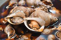 29)富山のバイ貝:煮汁が染みこんで茶色く染まったバイ貝=大阪市中央区、加藤諒撮影