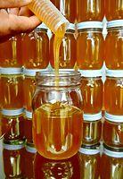 34)兵庫の百花蜜:瓶詰めされるハチミツ。口に入れると、華やかな香りが広がる=兵庫県川西市、水野義則撮影